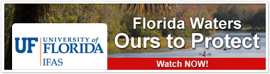 Florida Waters: Ours to Protect